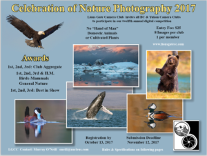 Lions Gate Nature Competition - 2017