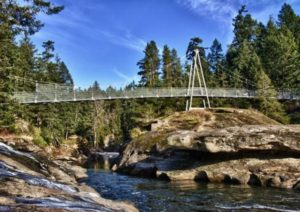 JULY FIELD TRIP @ Top Bridge - Englishmen River- Parksville BC